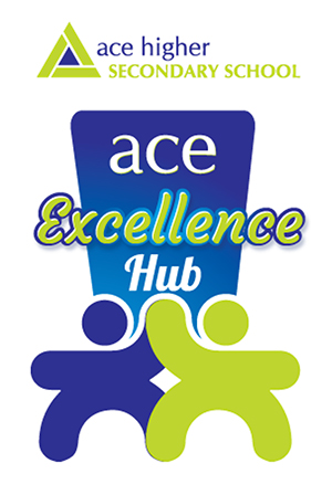 Ace Excellence Hub